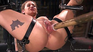 master gives kleio exactly what she needs