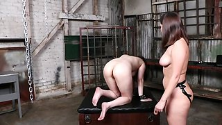 Two lesbian chicks are only interested in some ass play
