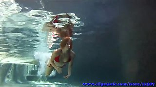 the pool stalker